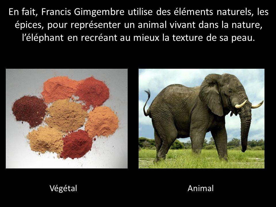 En fait, Francis Gimgembre utilise des éléments naturels, les épices, pour représenter un animal vivant dans la nature, léléphant en recréant au mieux la texture de sa peau.