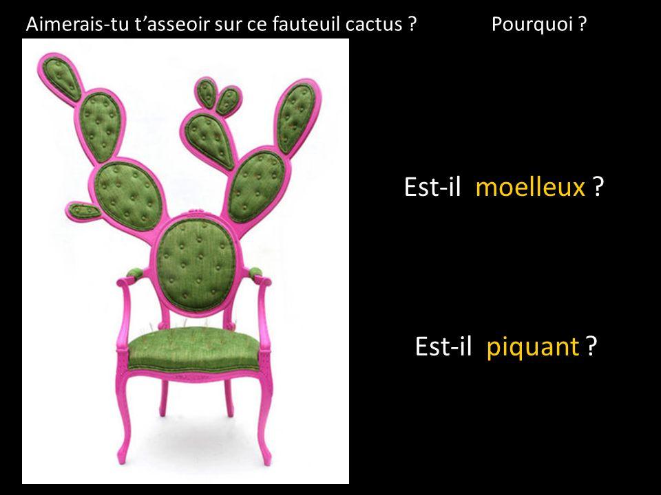 Aimerais-tu tasseoir sur ce fauteuil cactus ? Pourquoi ? Est-il moelleux ? Est-il piquant ?