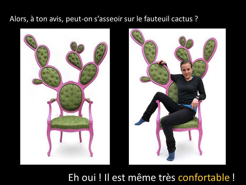 Alors, à ton avis, peut-on sasseoir sur le fauteuil cactus .