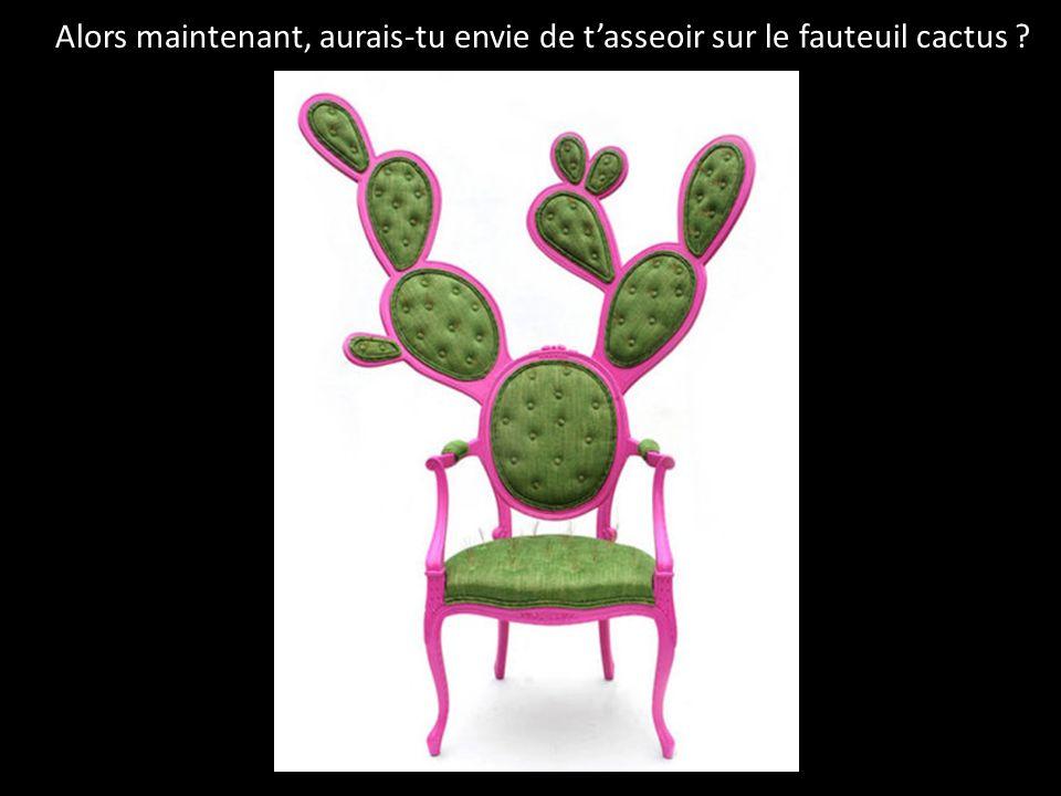 Alors maintenant, aurais-tu envie de tasseoir sur le fauteuil cactus ?