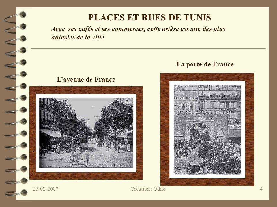 4 Lavenue de France La porte de France PLACES ET RUES DE TUNIS Avec ses cafés et ses commerces, cette artère est une des plus animées de la ville Créa