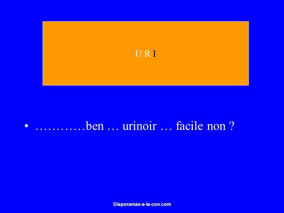 Diaporamas-a-la-con.com …………ben … urinoir … facile non ? U R I