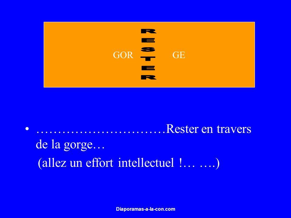 Diaporamas-a-la-con.com …………………………Rester en travers de la gorge… (allez un effort intellectuel !… ….) GOR GE