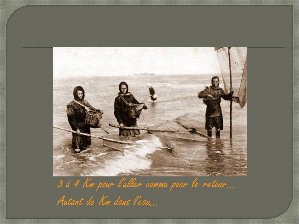L'action de pousser l'engin de pêche dans l'eau, à mi hauteur du corps est dite : « creuler »