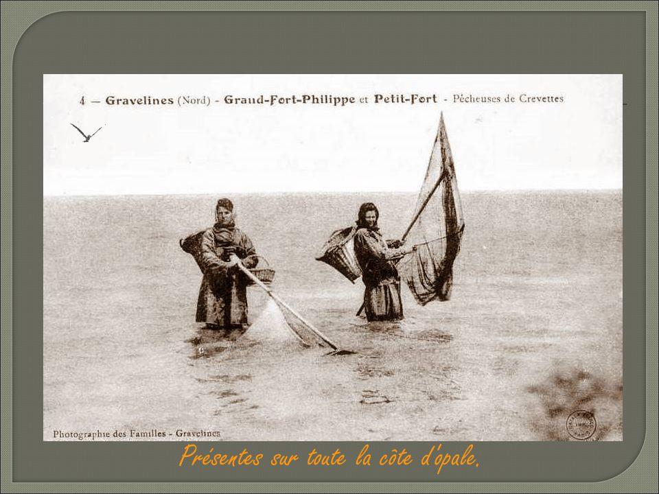 La Pêcheuse de crevettes: « El guarnadeuse »comme on dit chez nous ou « i z'allotent à guarnades ». Ce métier se faisait surtout de Février à Mars et