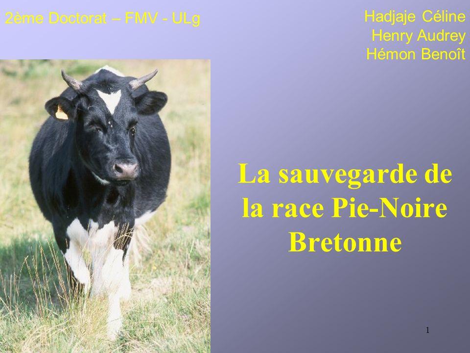 1 La sauvegarde de la race Pie-Noire Bretonne Hadjaje Céline Henry Audrey Hémon Benoît 2ème Doctorat – FMV - ULg