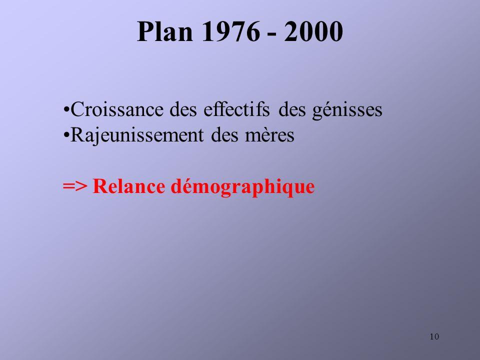 10 Croissance des effectifs des génisses Rajeunissement des mères => Relance démographique Plan 1976 - 2000