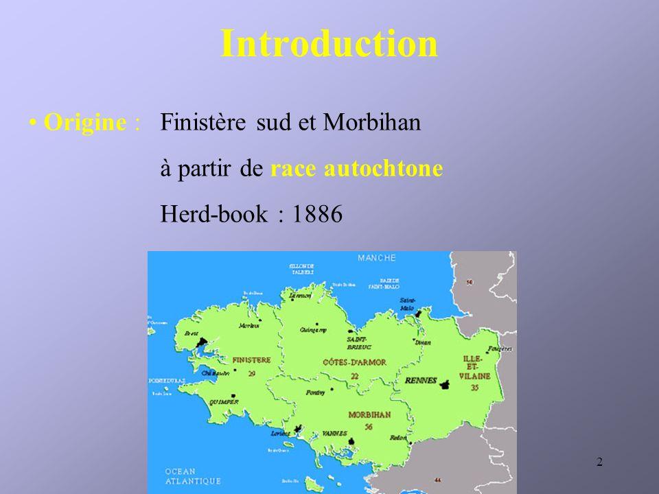 2 Introduction Origine : Finistère sud et Morbihan à partir de race autochtone Herd-book : 1886