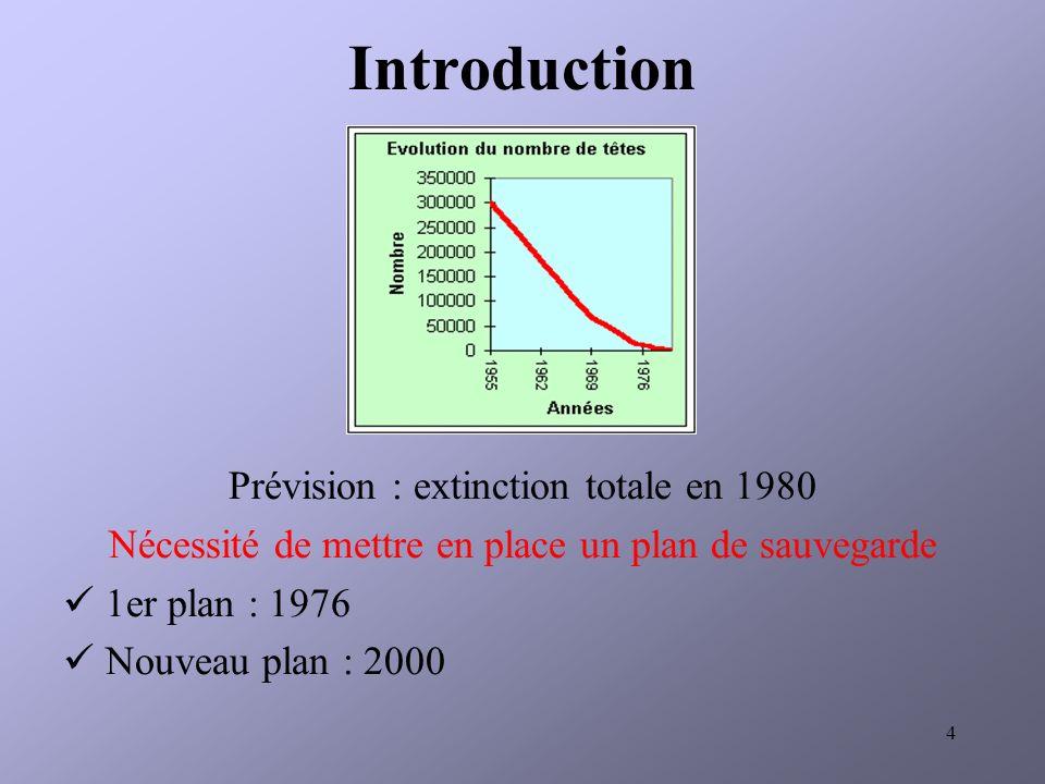 4 Prévision : extinction totale en 1980 Nécessité de mettre en place un plan de sauvegarde 1er plan : 1976 Nouveau plan : 2000 Introduction