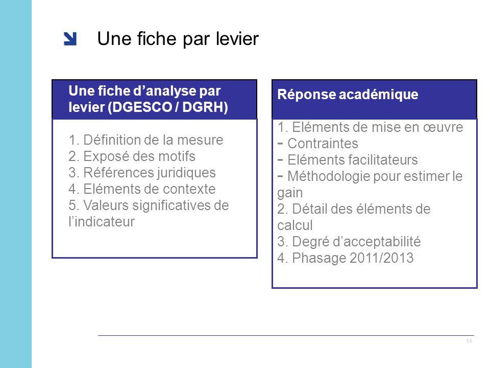 14 Une fiche par levier Une fiche danalyse par levier (DGESCO / DGRH) 1.
