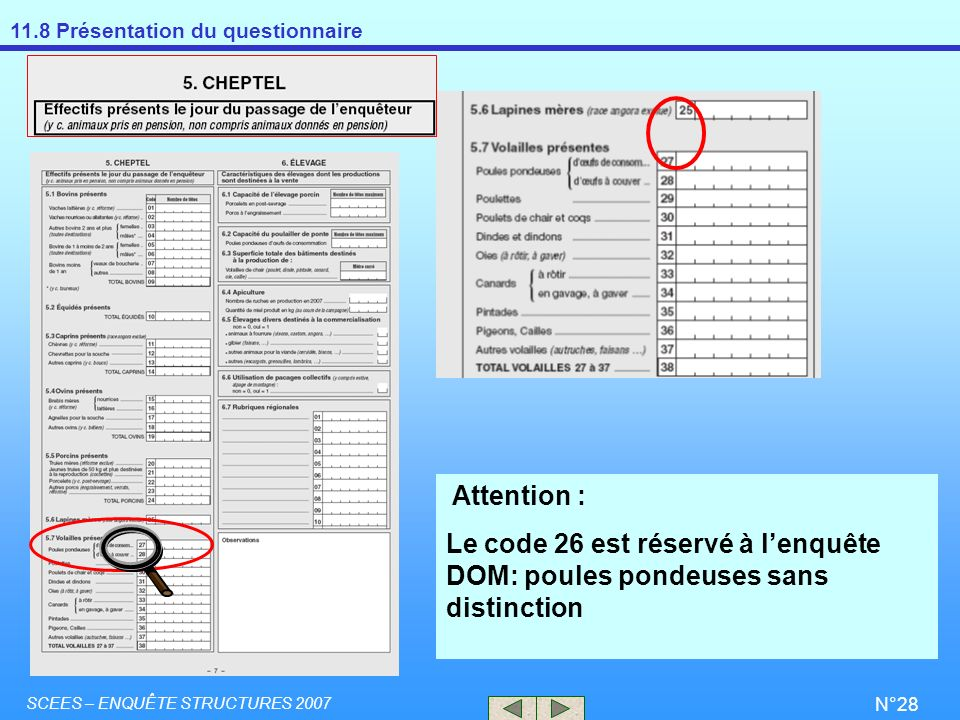 11.8 Présentation du questionnaire SCEES – ENQUÊTE STRUCTURES 2007 N°28 Attention : Le code 26 est réservé à lenquête DOM: poules pondeuses sans disti