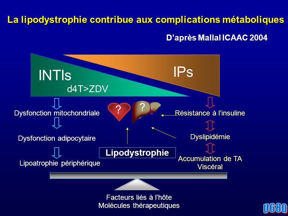 INTIs d4T>ZDV IPs Dysfonction mitochondriale Dysfonction adipocytaire Résistance à linsuline Dyslipidémie Accumulation de TA Viscéral Lipodystrophie Facteurs liés à lhôte Molécules thérapeutiques Lipoatrophie périphérique La lipodystrophie contribue aux complications métaboliques Daprès Mallal ICAAC 2004 .