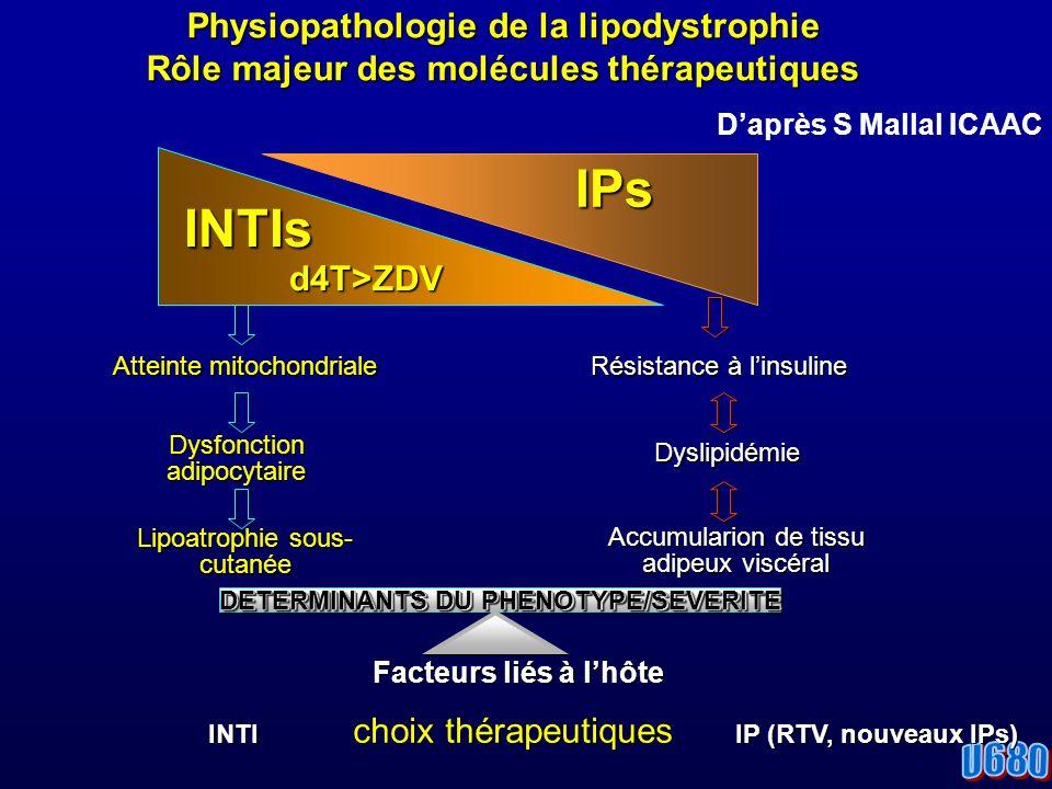 Physiopathologie de la lipodystrophie Rôle majeur des molécules thérapeutiques INTIsd4T>ZDV IPs IPs Atteinte mitochondriale Dysfonction adipocytaire Lipoatrophie sous- cutanée Facteurs liés à lhôte INTI choix thérapeutiques IP (RTV, nouveaux IPs) Facteurs liés à lhôte INTI choix thérapeutiques IP (RTV, nouveaux IPs) DETERMINANTS DU PHENOTYPE/SEVERITE Résistance à linsuline Dyslipidémie Accumularion de tissu adipeux viscéral Daprès S Mallal ICAAC