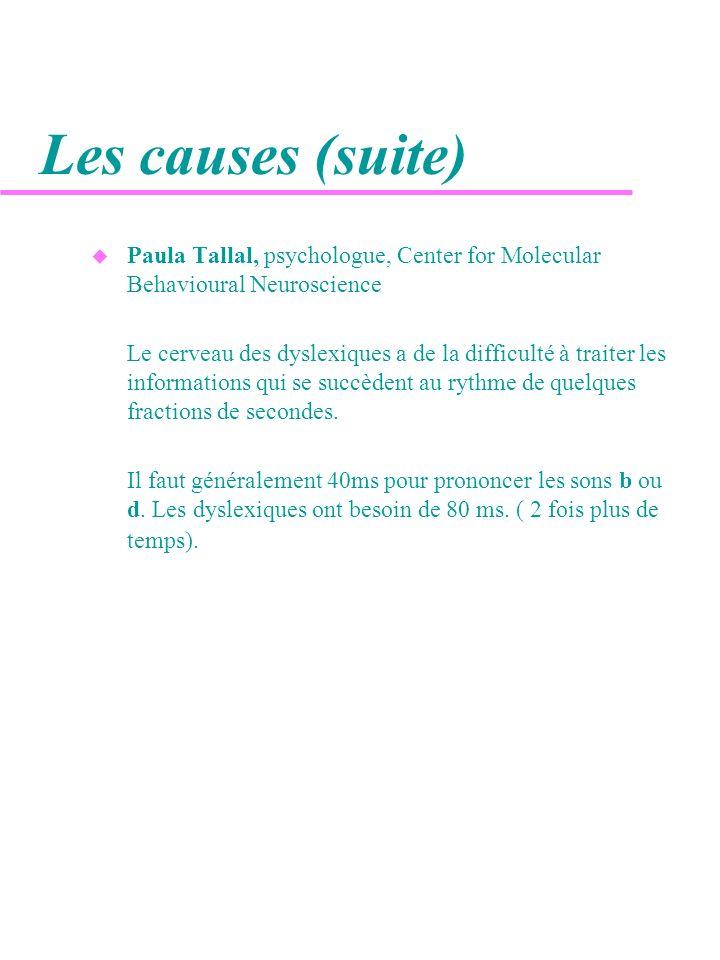 Les causes (suite) u Paula Tallal, psychologue, Center for Molecular Behavioural Neuroscience Le cerveau des dyslexiques a de la difficulté à traiter