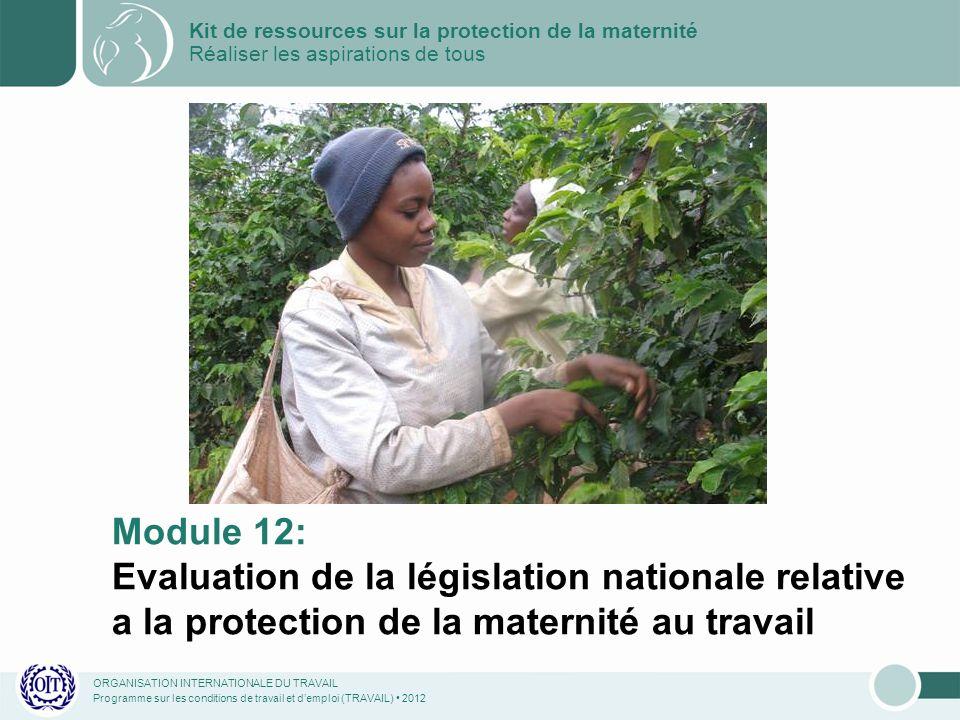 ORGANISATION INTERNATIONALE DU TRAVAIL Programme sur les conditions de travail et demploi (TRAVAIL) 2012 Module 12: Evaluation de la législation natio