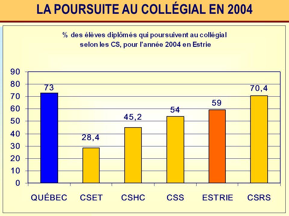 LA POURSUITE AU COLLÉGIAL EN 2004