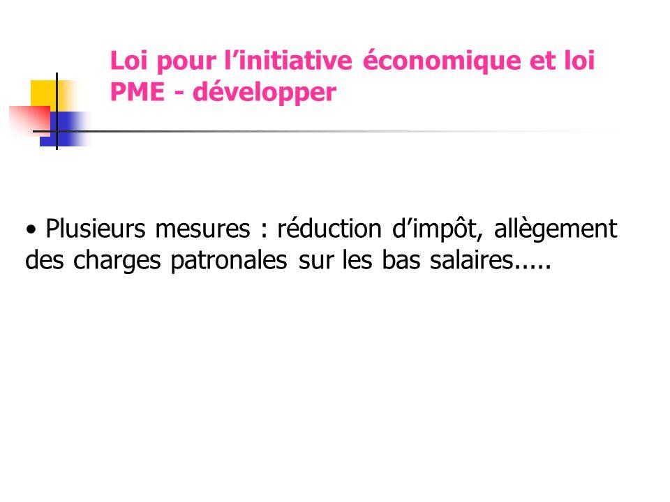 Loi pour linitiative économique et loi PME - développer Plusieurs mesures : réduction dimpôt, allègement des charges patronales sur les bas salaires.....