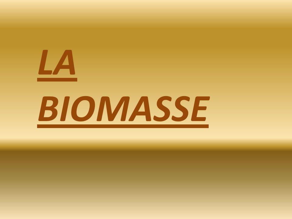 Mais quest-ce que la Biomasse? Si vous voulez bien on va lexaminer en 4 parties.