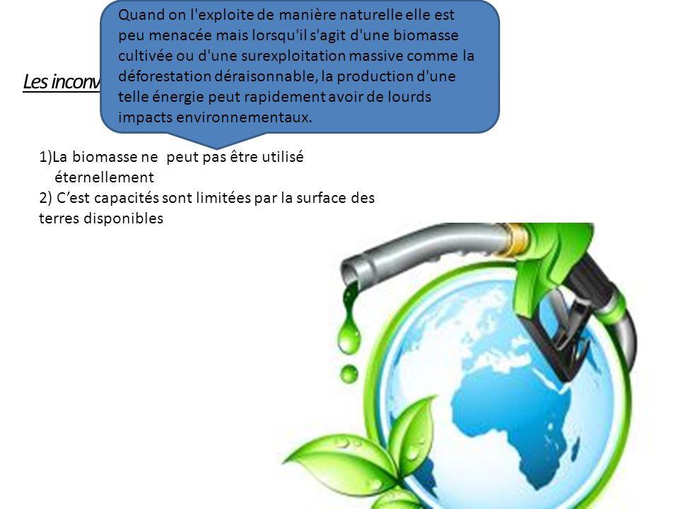Les inconvénients: 1)La biomasse ne peut pas être utilisé éternellement 2) Cest capacités sont limitées par la surface des terres disponibles Quand on