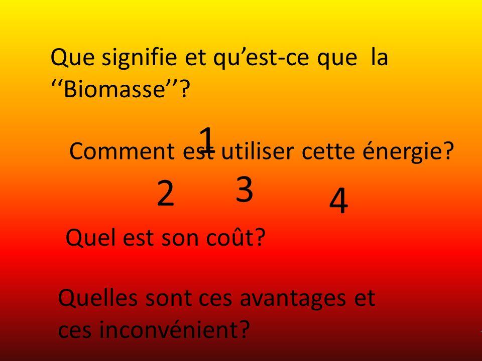 1 2 3 4 Que signifie et quest-ce que la Biomasse? Comment est utiliser cette énergie? Quel est son coût? Quelles sont ces avantages et ces inconvénien