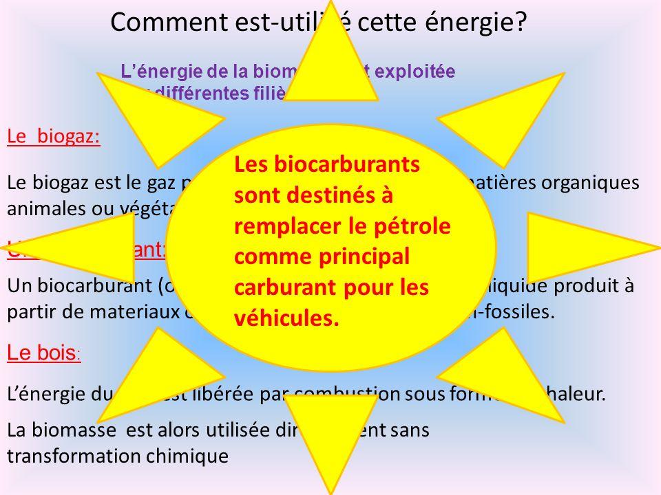 Comment est-utilisé cette énergie? Lénergie de la biomasse est exploitée par différentes filières : Le biogaz: Un biocarburant: Le bois : Un biocarbur