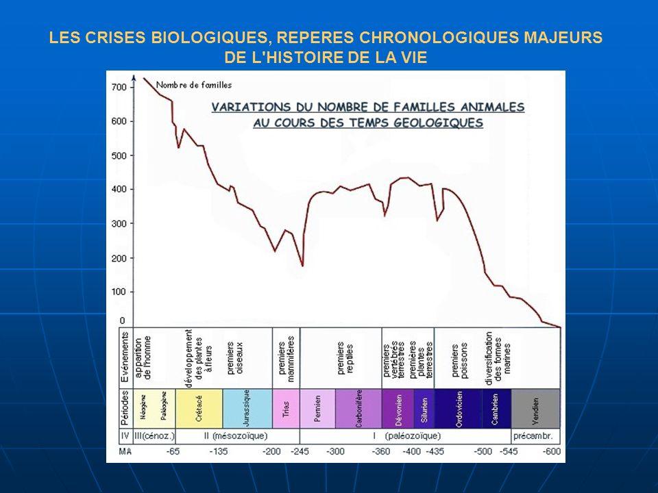 LES CRISES BIOLOGIQUES, REPERES CHRONOLOGIQUES MAJEURS DE L'HISTOIRE DE LA VIE