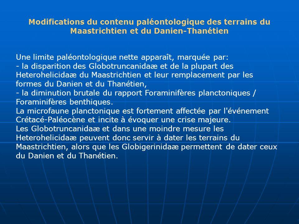 Modifications du contenu paléontologique des terrains du Maastrichtien et du Danien-Thanétien Une limite paléontologique nette apparaît, marquée par: