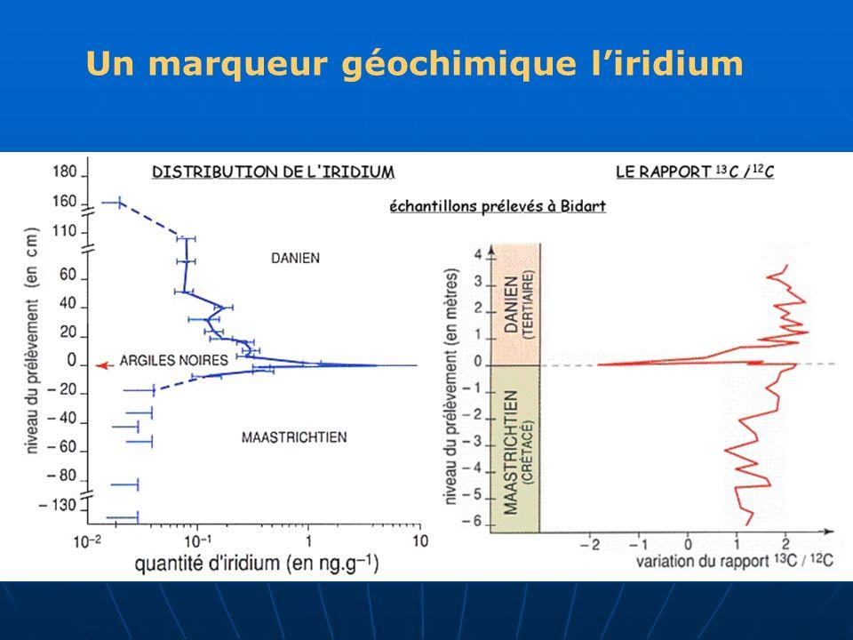 Un marqueur géochimique liridium