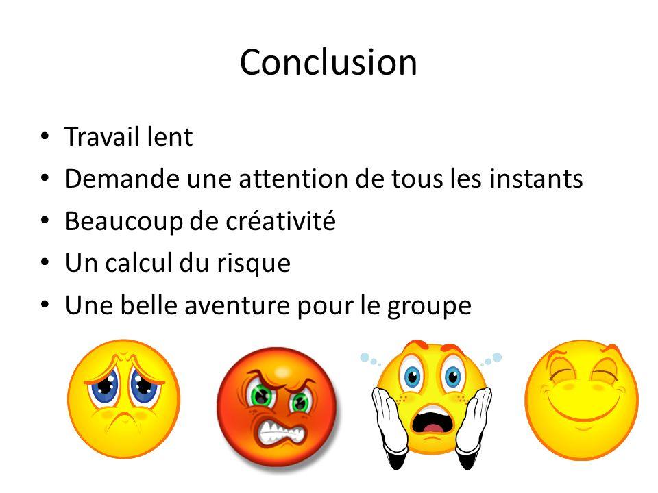 Conclusion Travail lent Demande une attention de tous les instants Beaucoup de créativité Un calcul du risque Une belle aventure pour le groupe