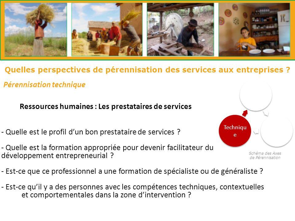 Schéma des Axes de Pérennisation Pérennisation technique Institutio nnelle Financie r Techniqu e Quelles perspectives de pérennisation des services aux entreprises .