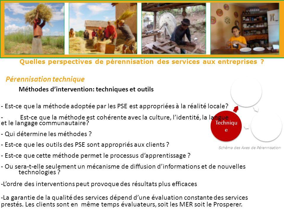 Schéma des Axes de Pérennisation Institutio nnelle Financie r Techniqu e Pérennisation technique Quelles perspectives de pérennisation des services aux entreprises .