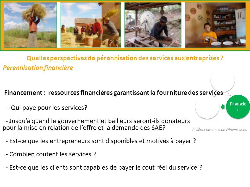 Schéma des Axes de Pérennisation Institutio nnelle Financie r Techniqu e Pérennisation financière Quelles perspectives de pérennisation des services aux entreprises .
