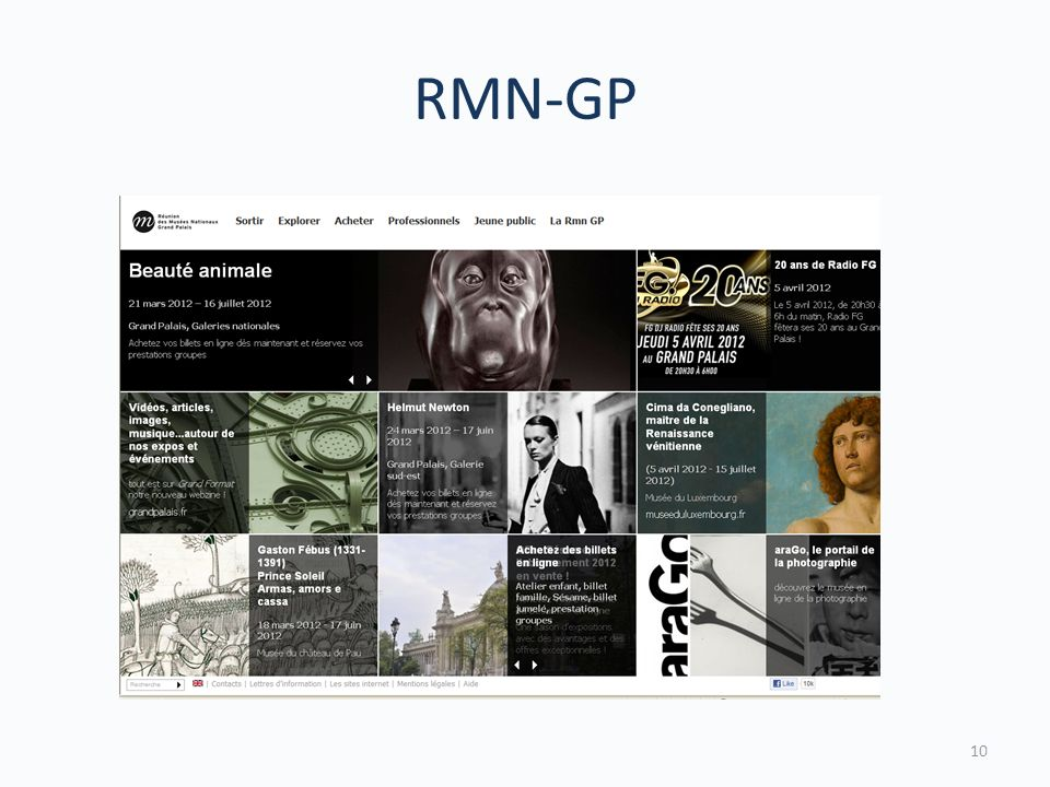 RMN-GP 10