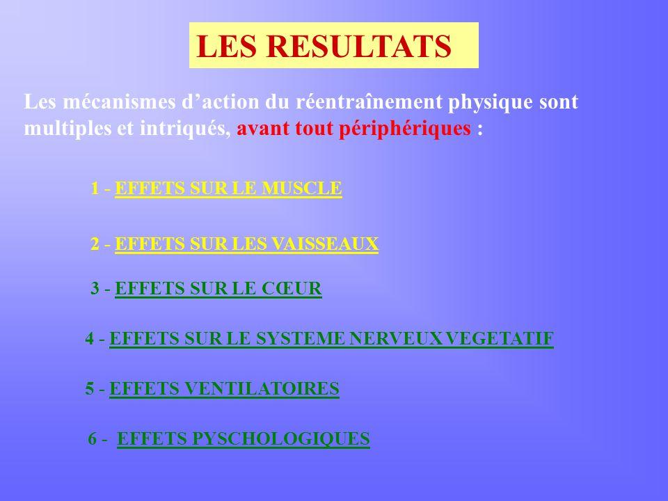 LES RESULTATS Les mécanismes daction du réentraînement physique sont multiples et intriqués, avant tout périphériques : 1 - EFFETS SUR LE MUSCLE 2 - EFFETS SUR LES VAISSEAUX 3 - EFFETS SUR LE CŒUR 4 - EFFETS SUR LE SYSTEME NERVEUX VEGETATIF 5 - EFFETS VENTILATOIRES 6 - EFFETS PYSCHOLOGIQUES
