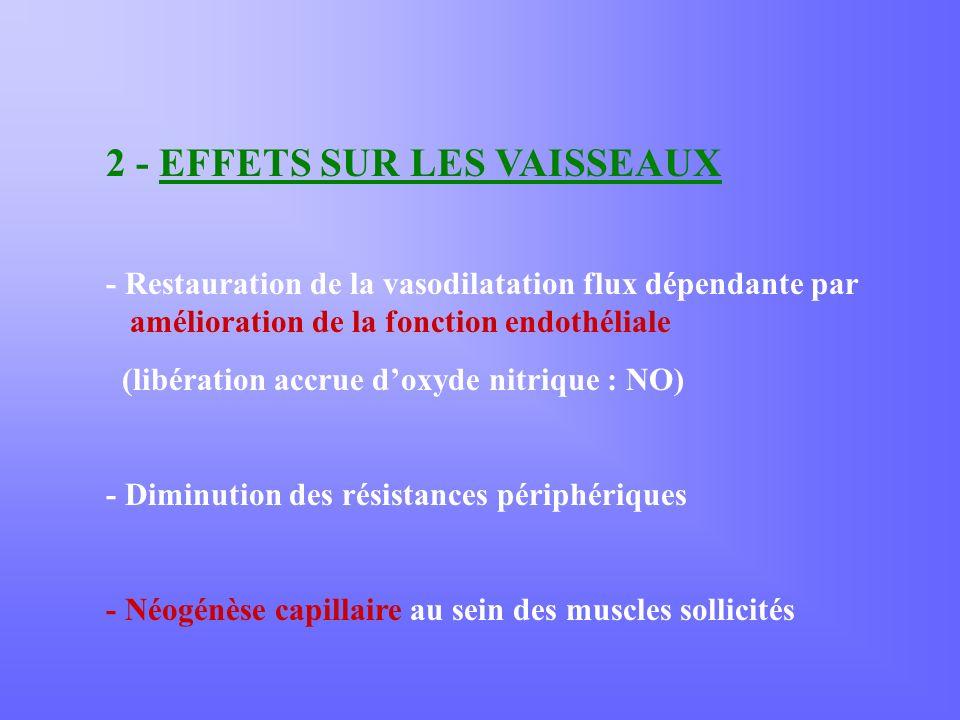 2 - EFFETS SUR LES VAISSEAUX - Restauration de la vasodilatation flux dépendante par amélioration de la fonction endothéliale (libération accrue doxyde nitrique : NO) - Diminution des résistances périphériques - Néogénèse capillaire au sein des muscles sollicités