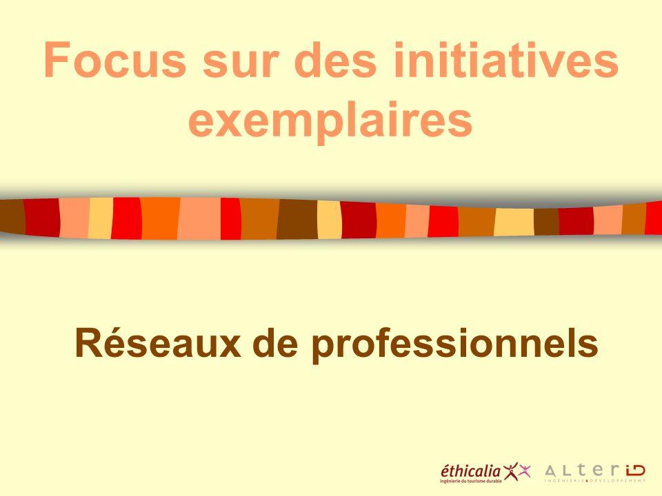 Focus sur des initiatives exemplaires Réseaux de professionnels
