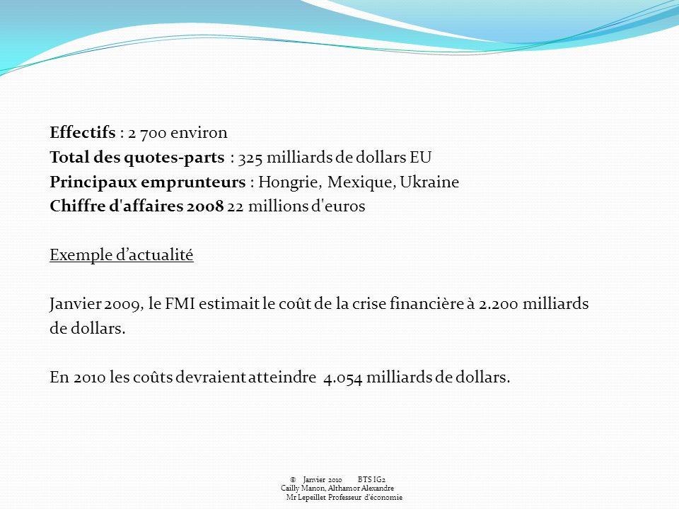 Effectifs : 2 700 environ Total des quotes-parts : 325 milliards de dollars EU Principaux emprunteurs : Hongrie, Mexique, Ukraine Chiffre d'affaires 2