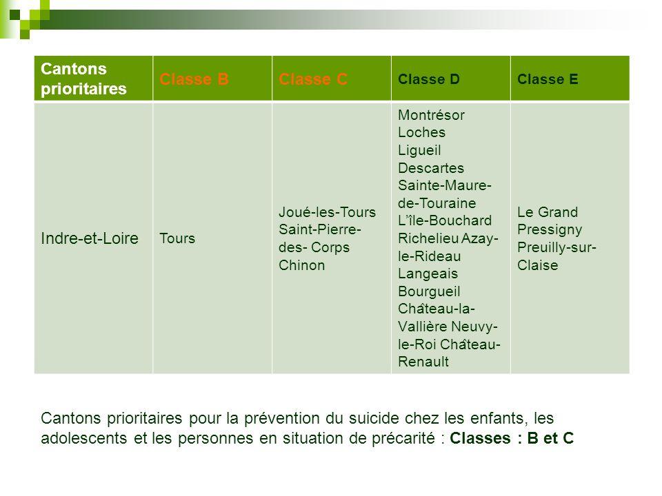 Cantons prioritaires Classe BClasse C Classe DClasse E Indre-et-Loire Tours Joué-les-Tours Saint-Pierre- des- Corps Chinon Montrésor Loches Ligueil