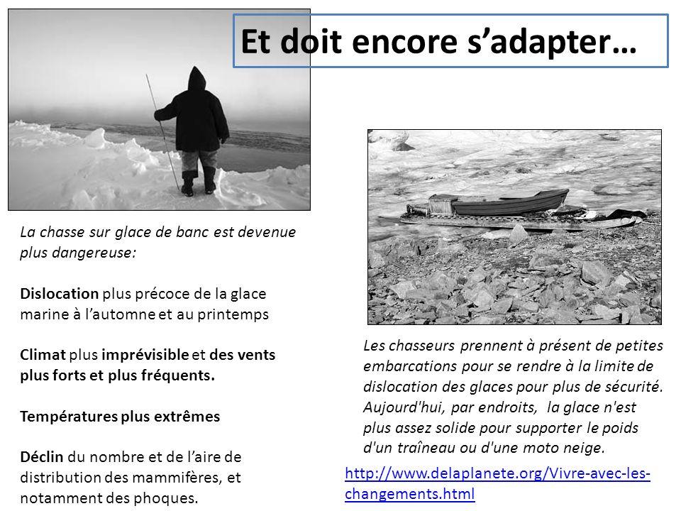 La chasse sur glace de banc est devenue plus dangereuse: Dislocation plus précoce de la glace marine à lautomne et au printemps Climat plus imprévisible et des vents plus forts et plus fréquents.