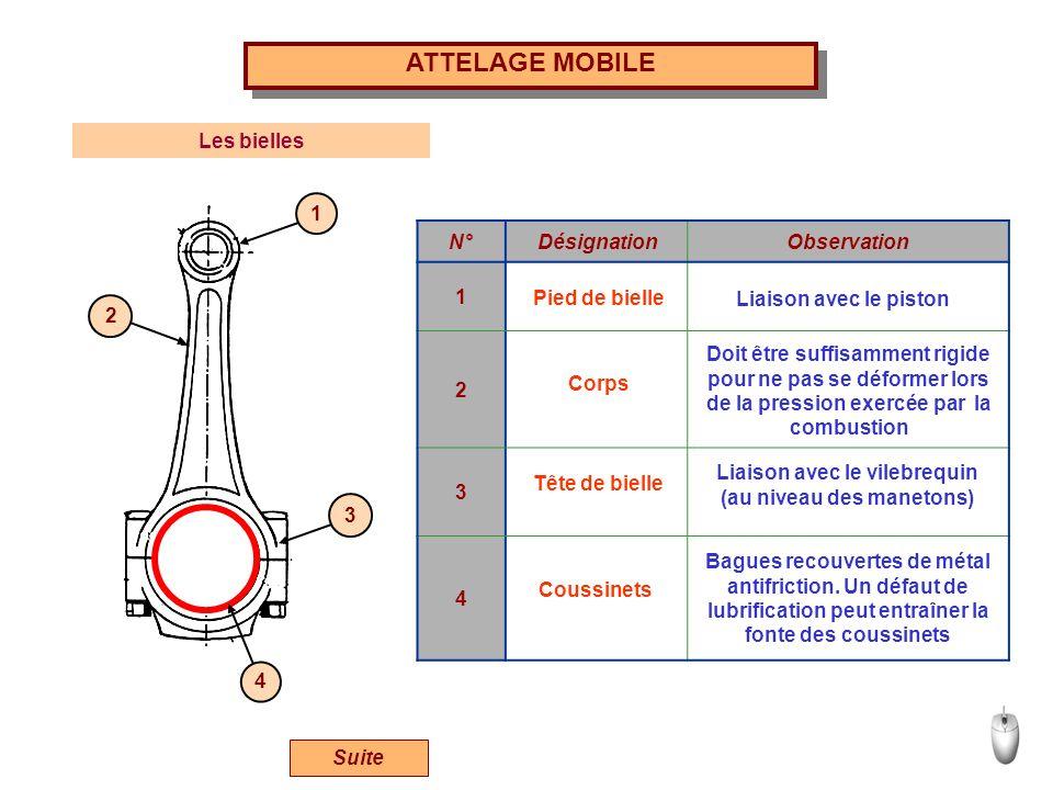[Image: slide_11.jpg]