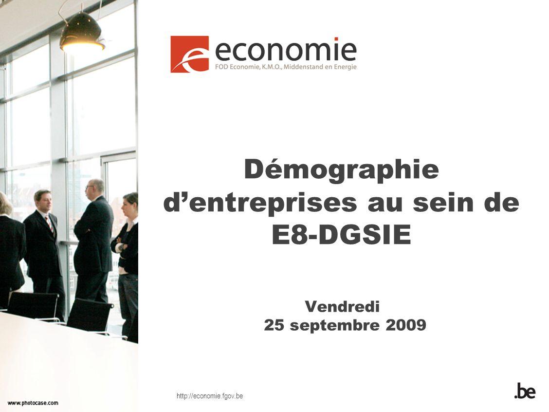 http://economie.fgov.be Démographie dentreprises au sein de E8-DGSIE Vendredi 25 septembre 2009