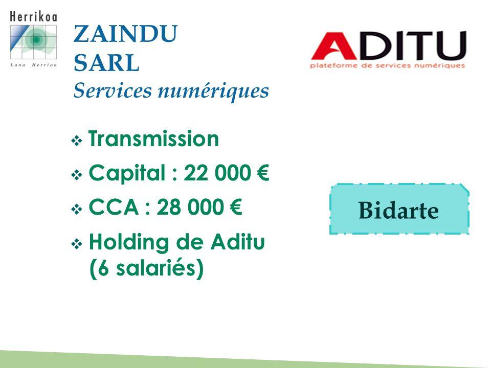 Transmission Capital : 22 000 CCA : 28 000 Holding de Aditu (6 salariés) ZAINDU SARL Services numériques Bidarte