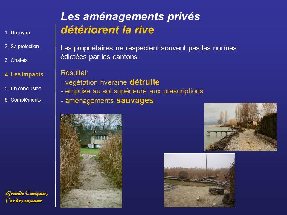 Résultat: - végétation riveraine détruite - emprise au sol supérieure aux prescriptions - aménagements sauvages Les propriétaires ne respectent souvent pas les normes édictées par les cantons.