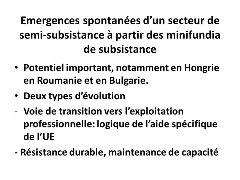 Emergences spontanées dun secteur de semi-subsistance à partir des minifundia de subsistance Potentiel important, notamment en Hongrie en Roumanie et