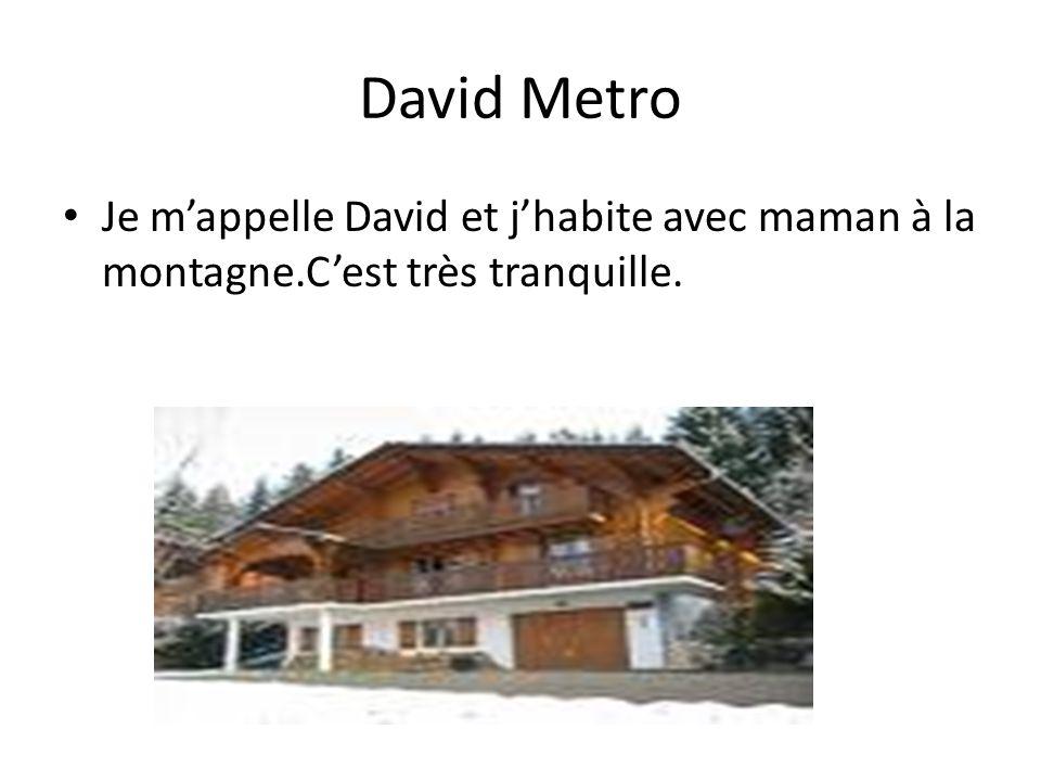 David Metro Je mappelle David et jhabite avec maman à la montagne.Cest très tranquille.