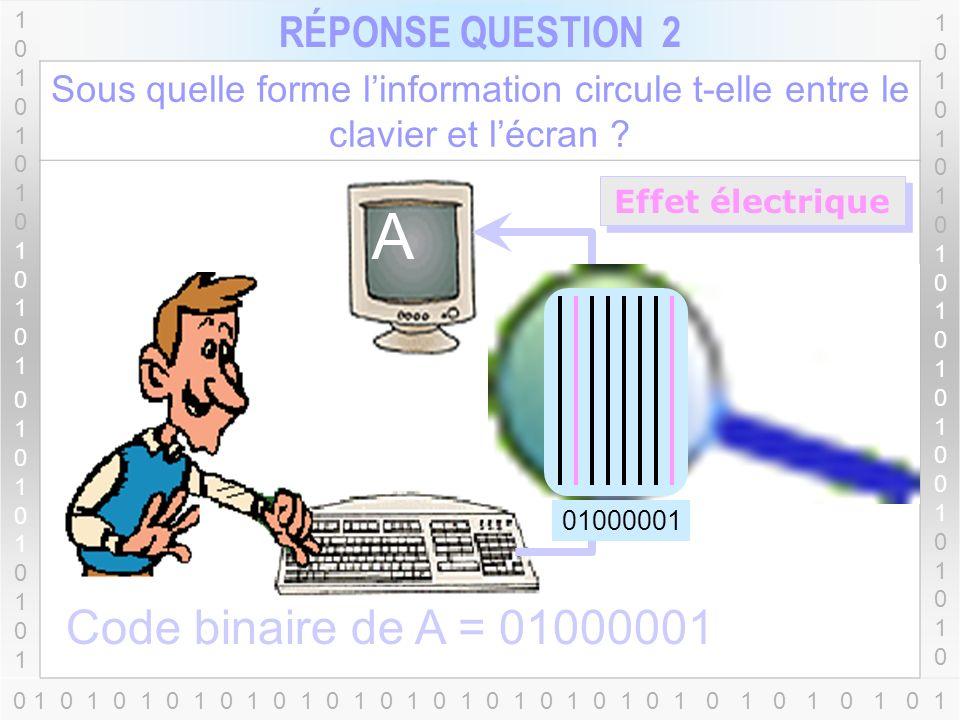 Lettres Chiffres Saut de lignes Caractère spécial... 1010101010101010101010110101010101010101010101 RÉPONSE QUESTION 1 1010101010101010010101010101010