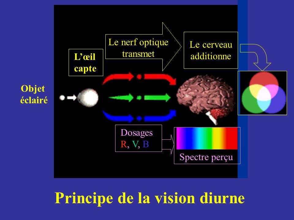 Objet éclairé Principe de la vision diurne Le nerf optique transmet Lœil capte Le cerveau additionne Dosages R, V, B Spectre perçu