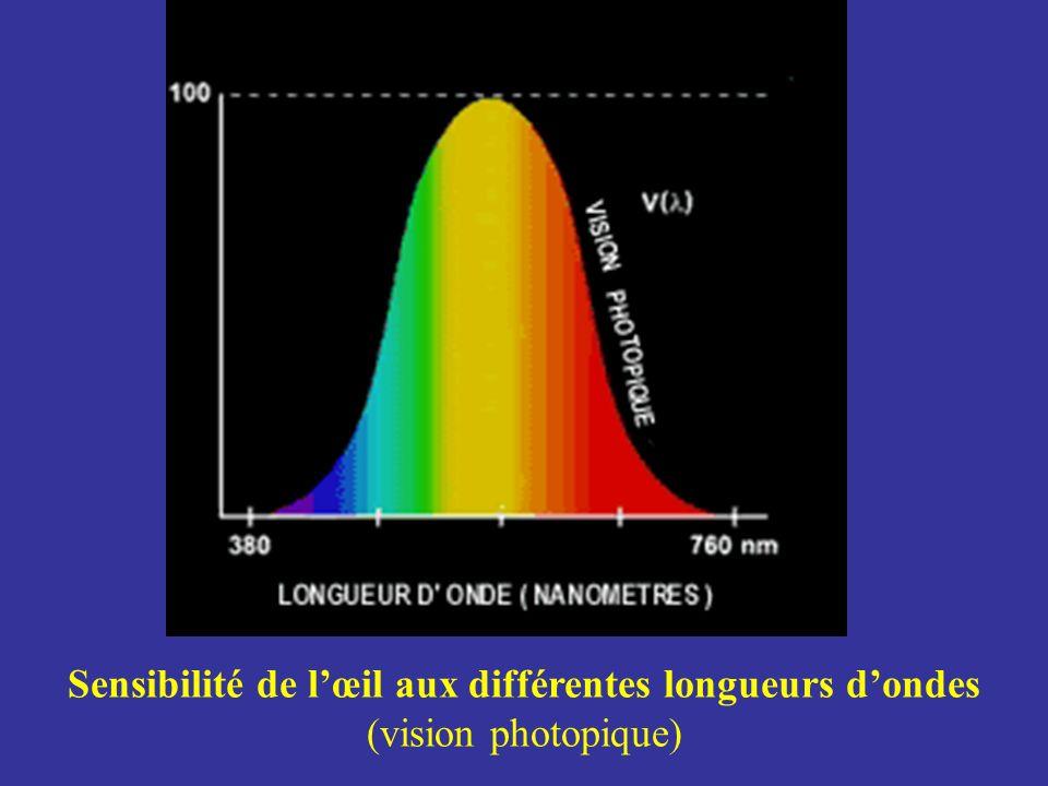 Sensibilité de lœil aux différentes longueurs dondes (vision photopique)