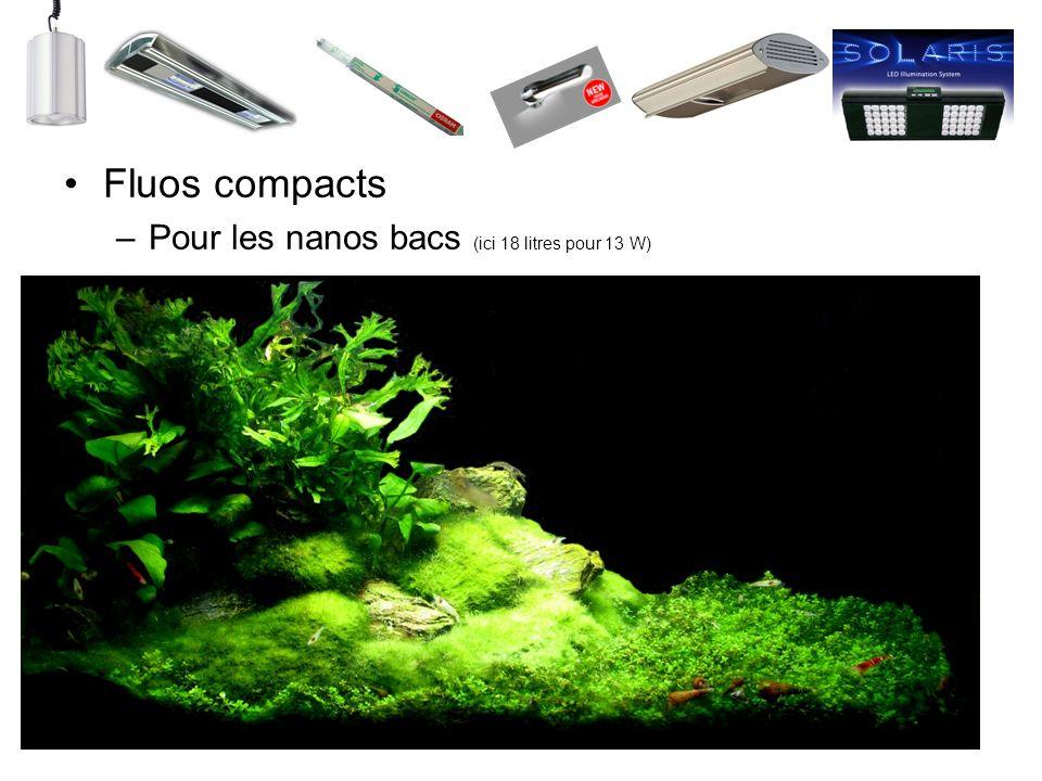 Fluos compacts –Pour les nanos bacs (ici 18 litres pour 13 W)