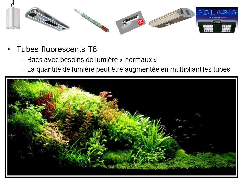 Tubes fluorescents T8 –Bacs avec besoins de lumière « normaux » –La quantité de lumière peut être augmentée en multipliant les tubes